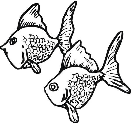 Peces para colorear para un acuario de infantil imagui for Peces para acuarios pequenos